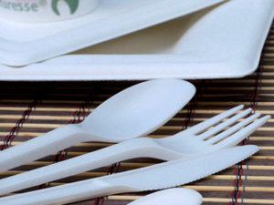 Vaisselle jetable biodégradable sur événement Lyon
